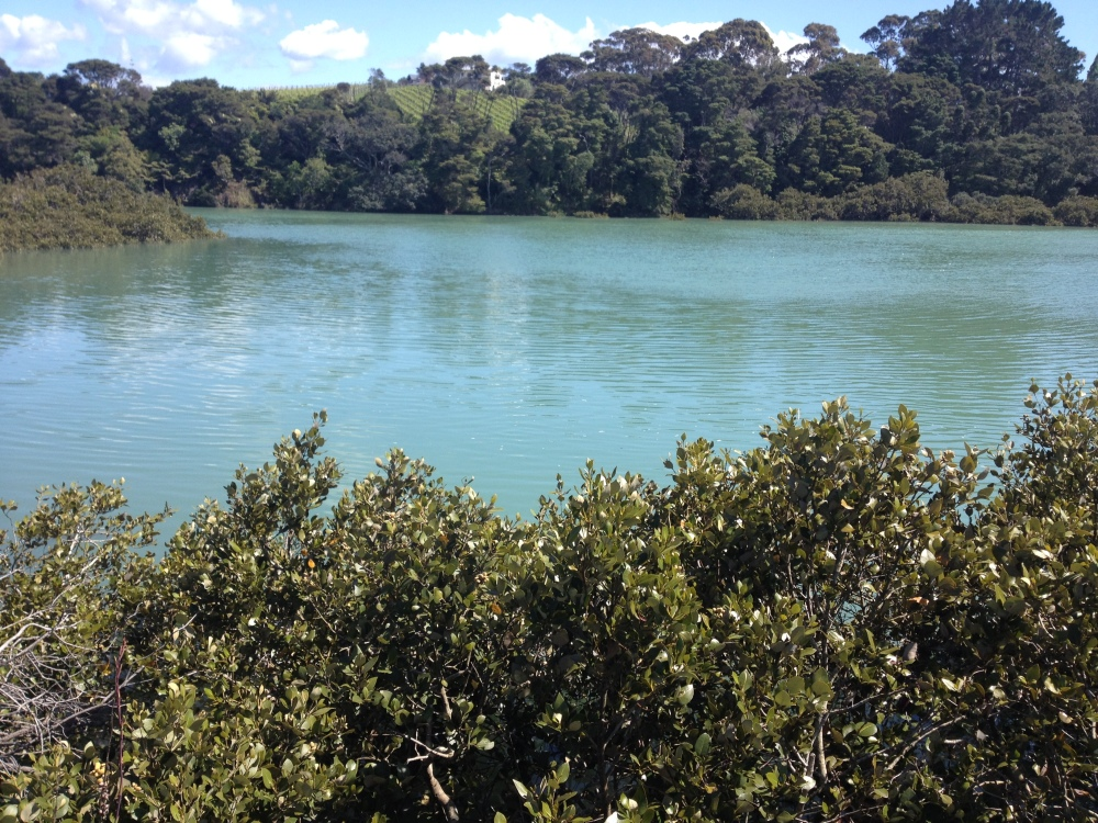 Wānanga writing retreats: A powerful Indigenous learning tool (3/3)