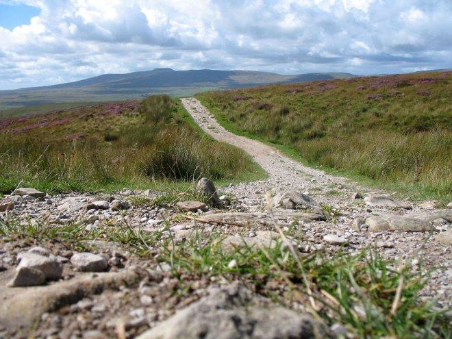 6106-a-stone-path-by-a-mountain-landscape-pv